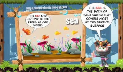 homophone worksheet sea